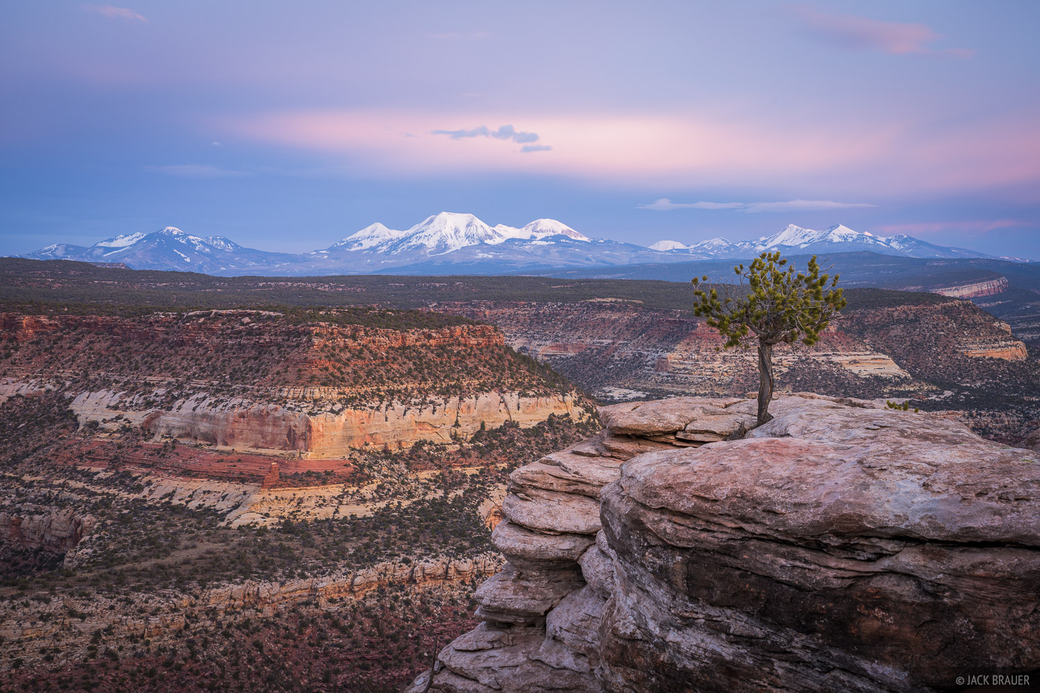 Colorado, Dolores River, La Sal Mountains, Utah, Dolores River Canyon Wilderness Study Area, photo