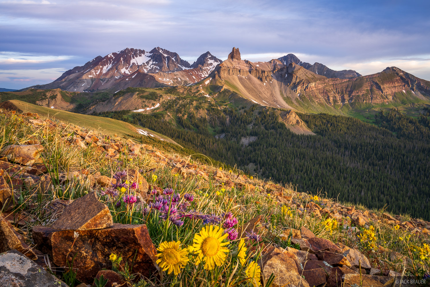 Black Face Mountain, Colorado, Gladstone Peak, Lizard Head Peak, Lizard Head Wilderness, Mount Wilson, San Juan Mountains, San Miguel Range, Wilson Peak, wildflowers, photo