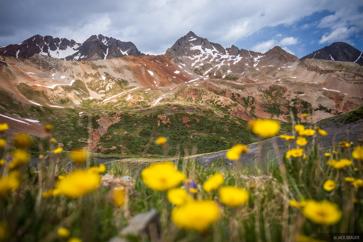 Colorado, Gladstone Peak, Lizard Head Wilderness, Mount Wilson, San Juan Mountains, San Miguel Range, Wilson Peak, wildflowers, photo