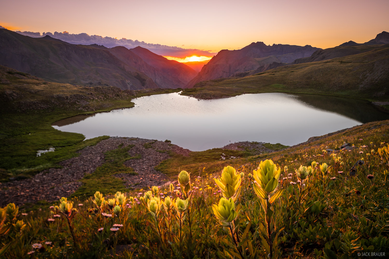 Sunrise light illuminates yellow Indian Paintbrush wildflowers at a high alpine lake in the San Juan Mountains.