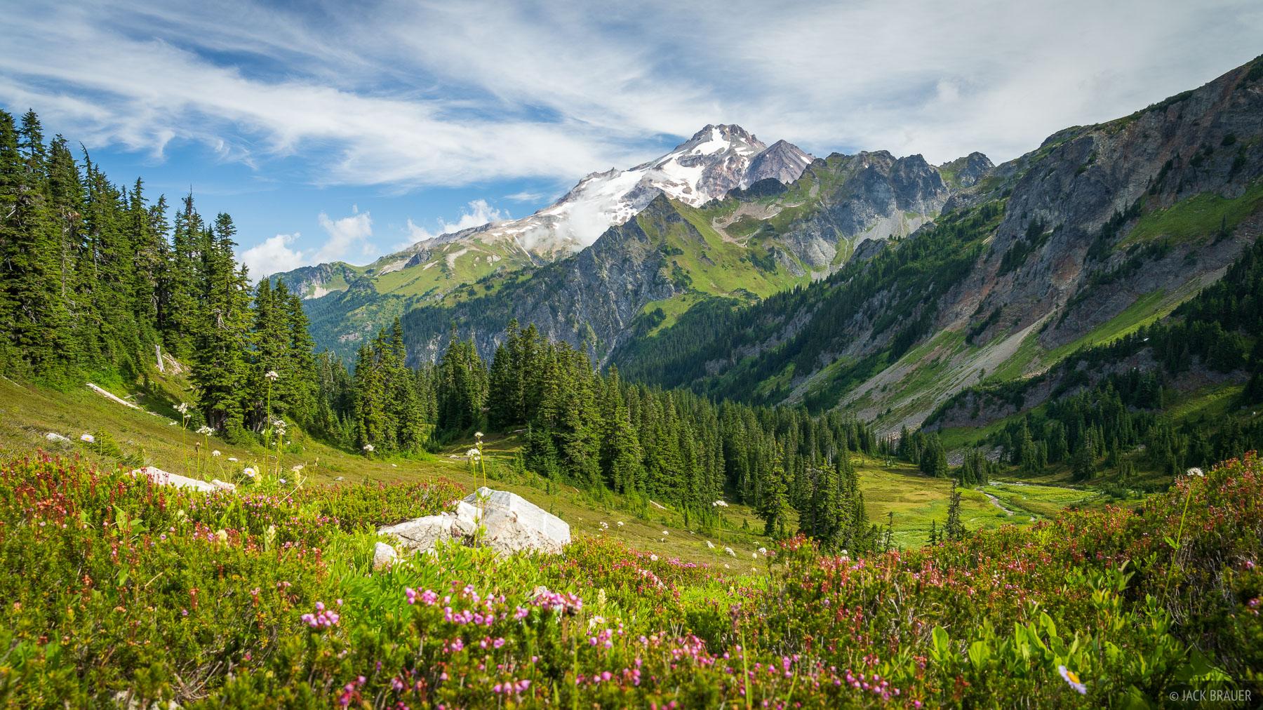 Glacier Peak, Glacier Peak Wilderness, Red Pass, Washington, wildflowers, Cascades, photo