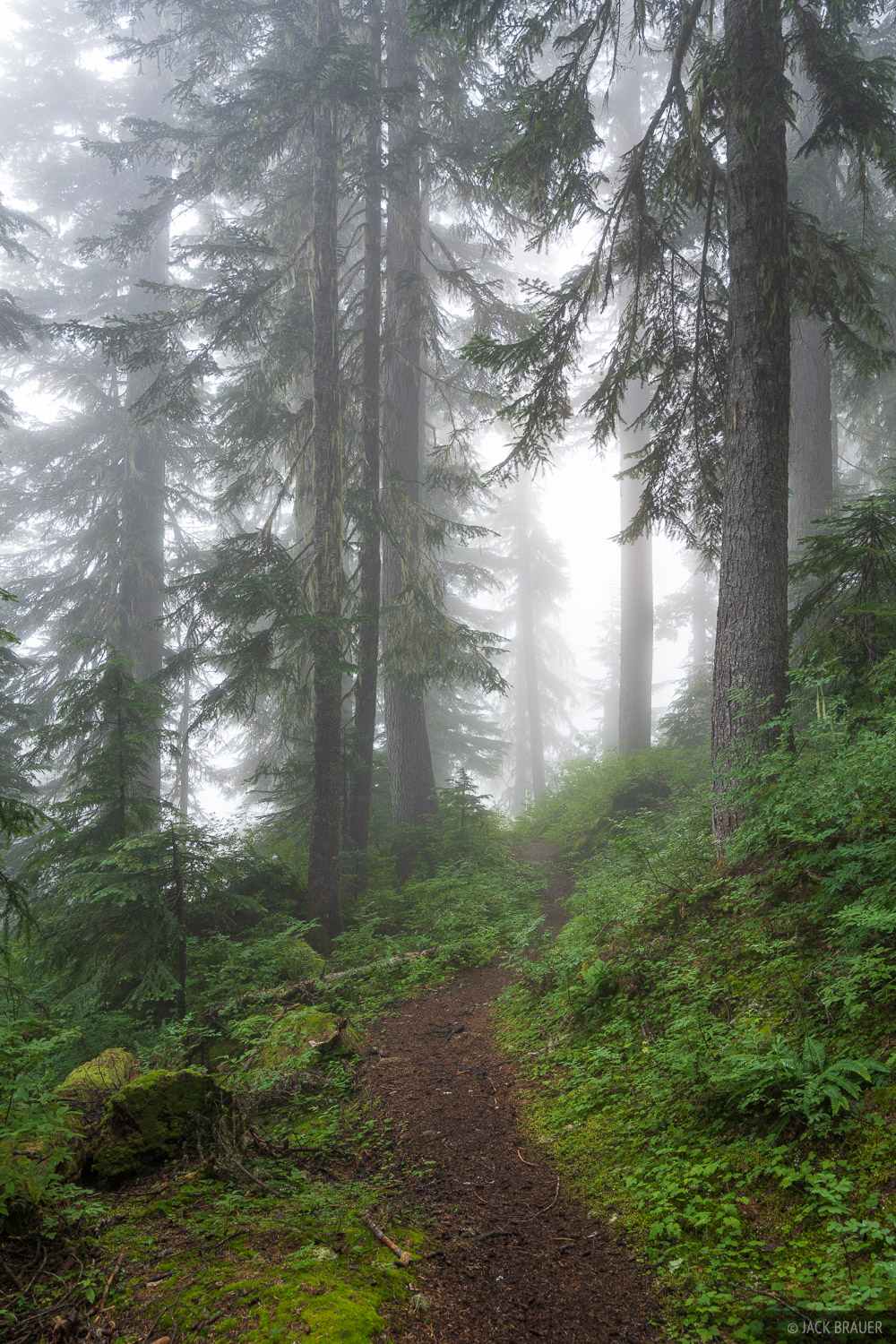Glacier Peak Wilderness, Washington, trail, Pacific Crest Trail, PCT, Cascades, photo