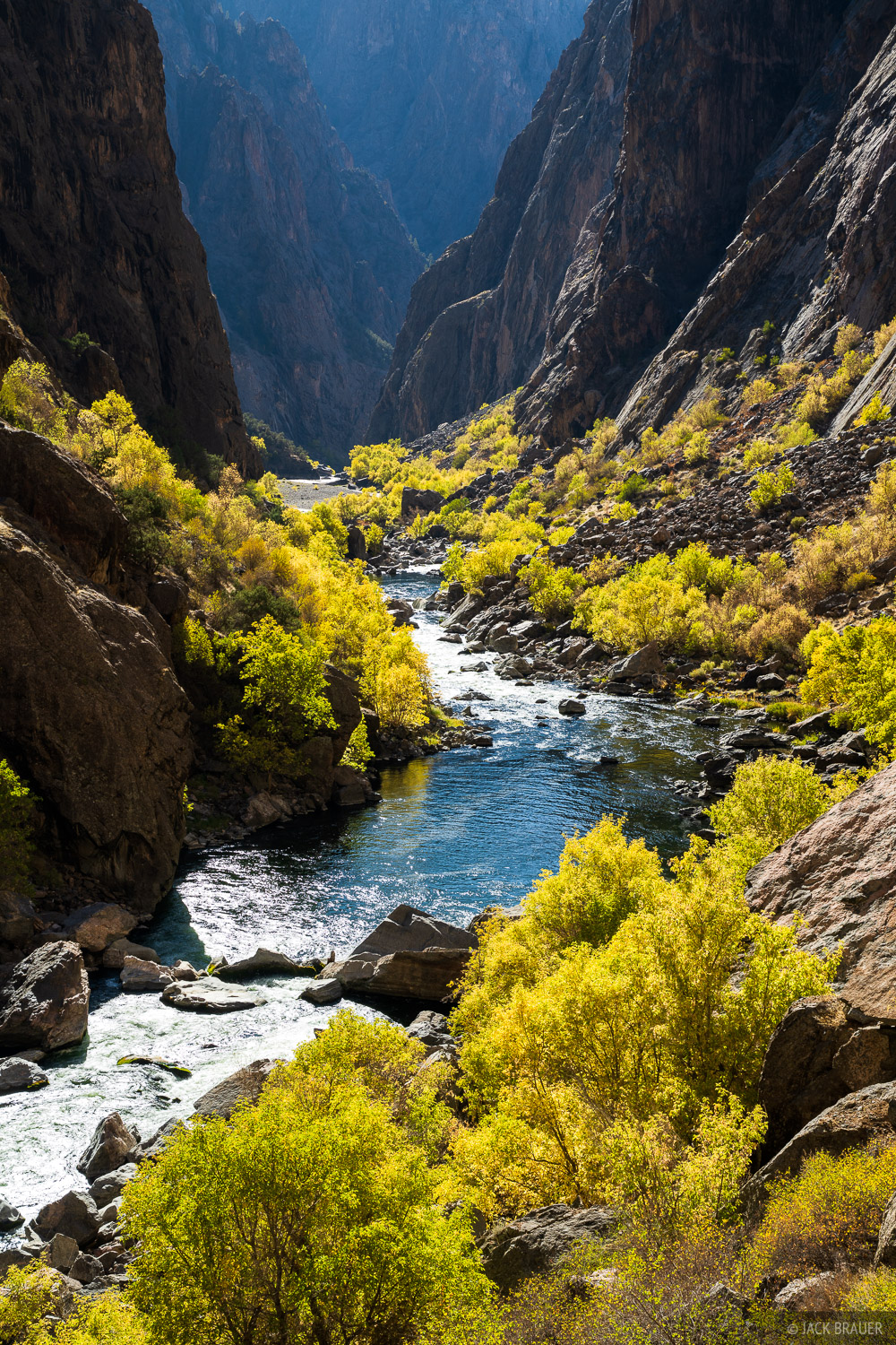 Autumn colors along the Gunnison River as it carves through the Black Canyon over 2,000 feet below the surrounding land, creating...