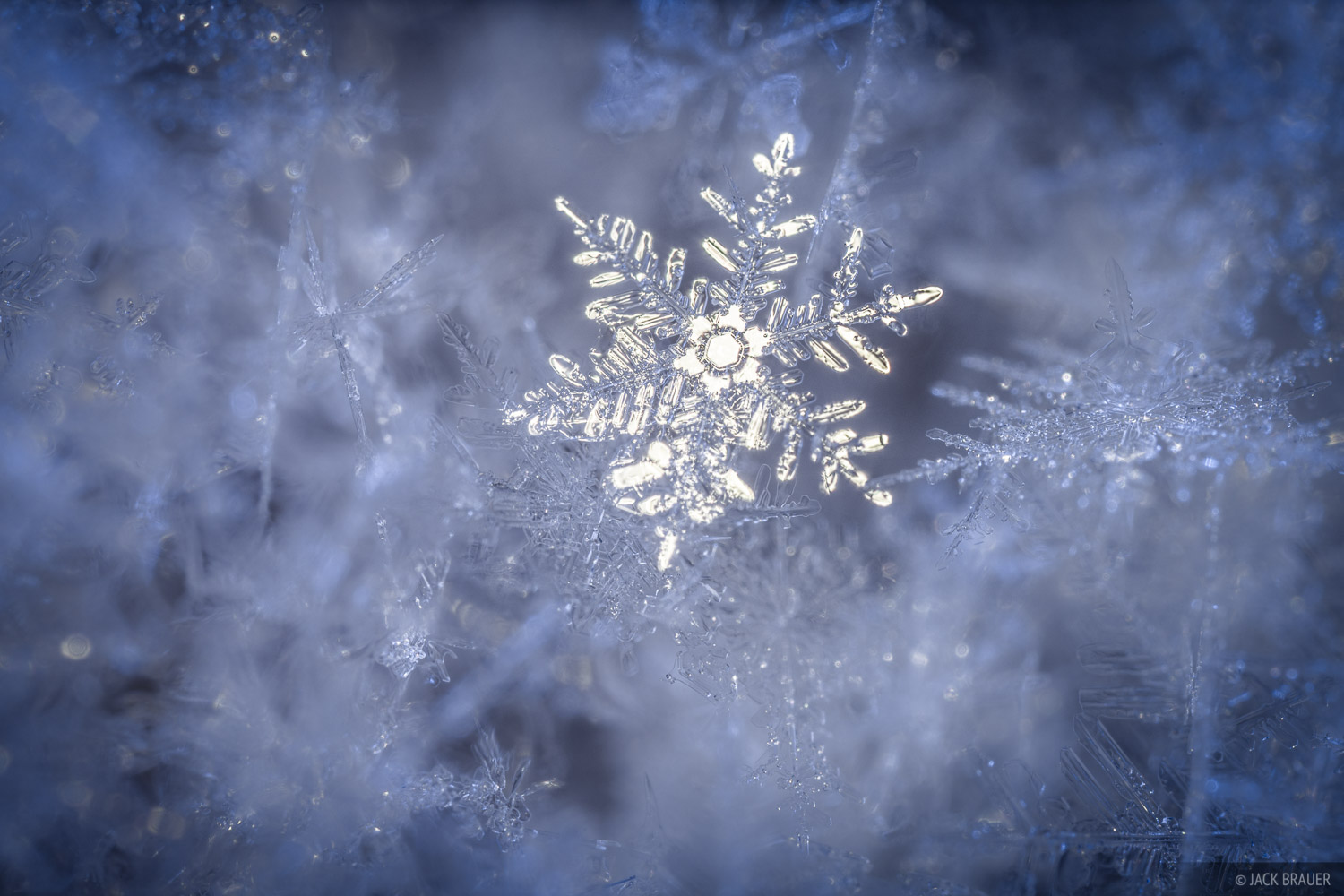 A macro perspective of a snowflake.