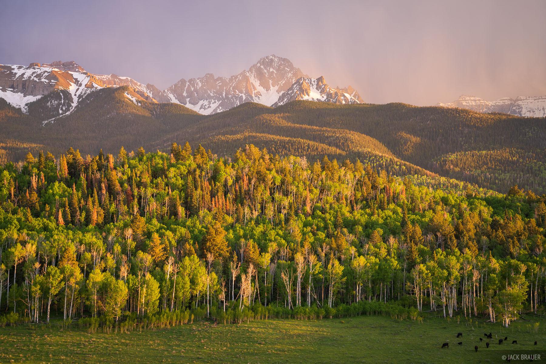 Sunset light filters through thunderstorm rain below Mount Sneffels.