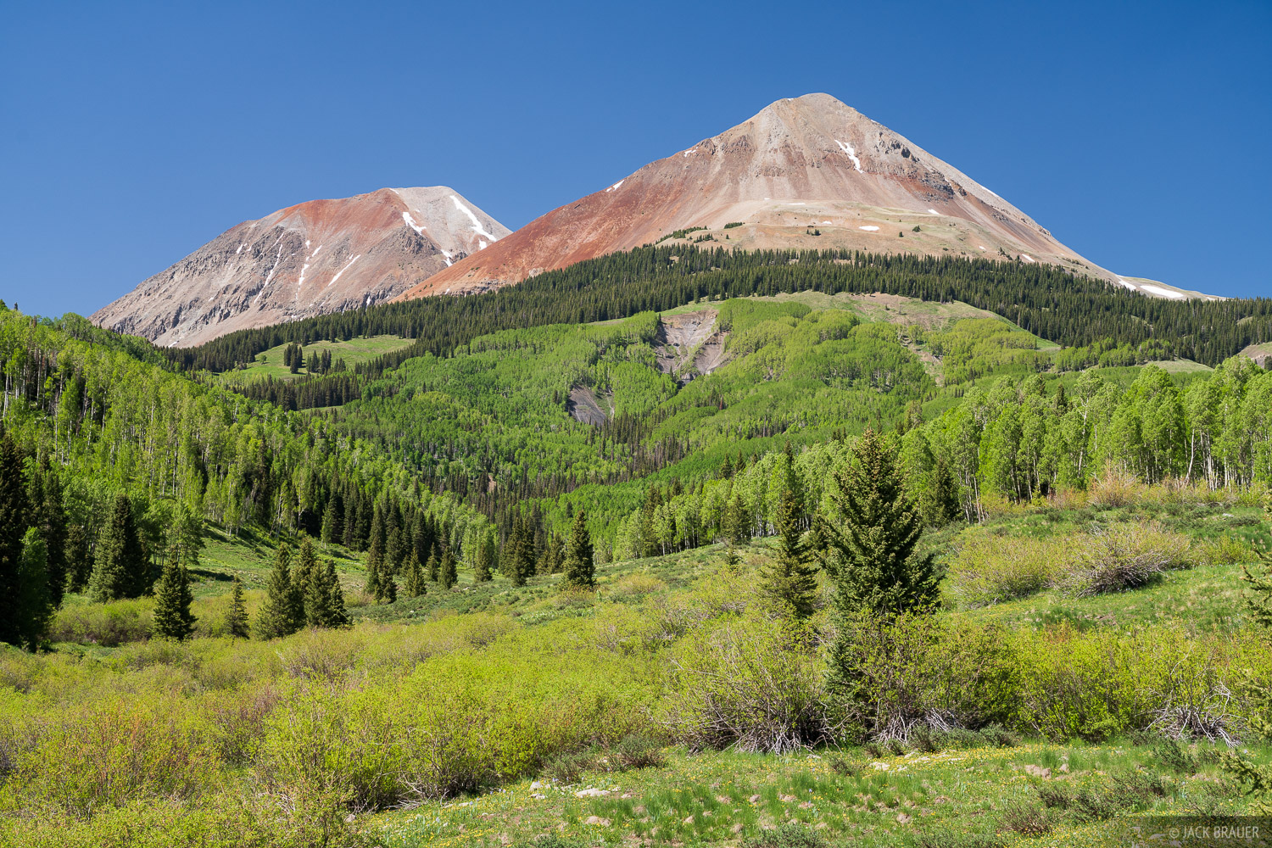 Aspens below Dolores Peak.