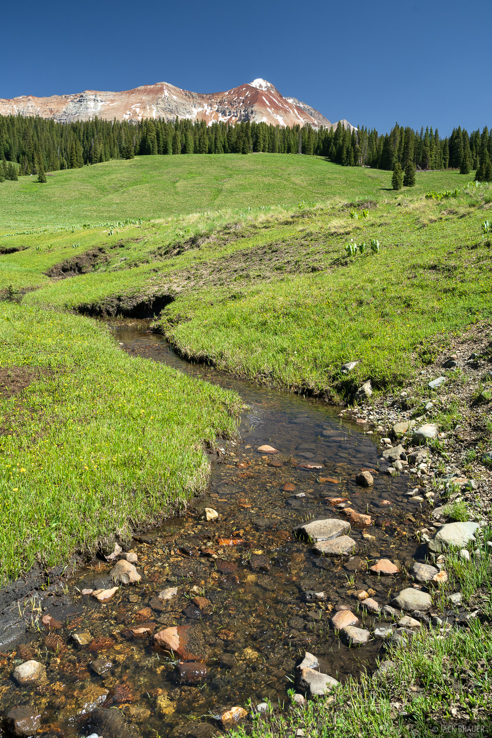 A creek flows through expansive meadows below Mount Wilson, the tallest 14er in the San Miguel Range at 14,250 feet.