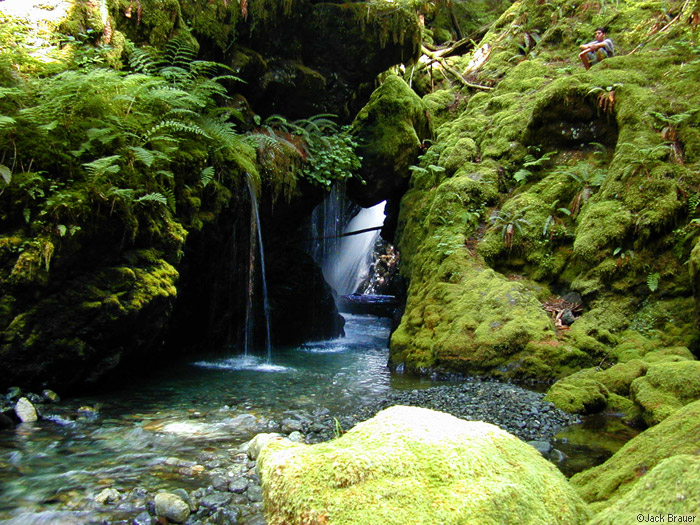 waterfall, Olympic Peninsula, Washington, photo