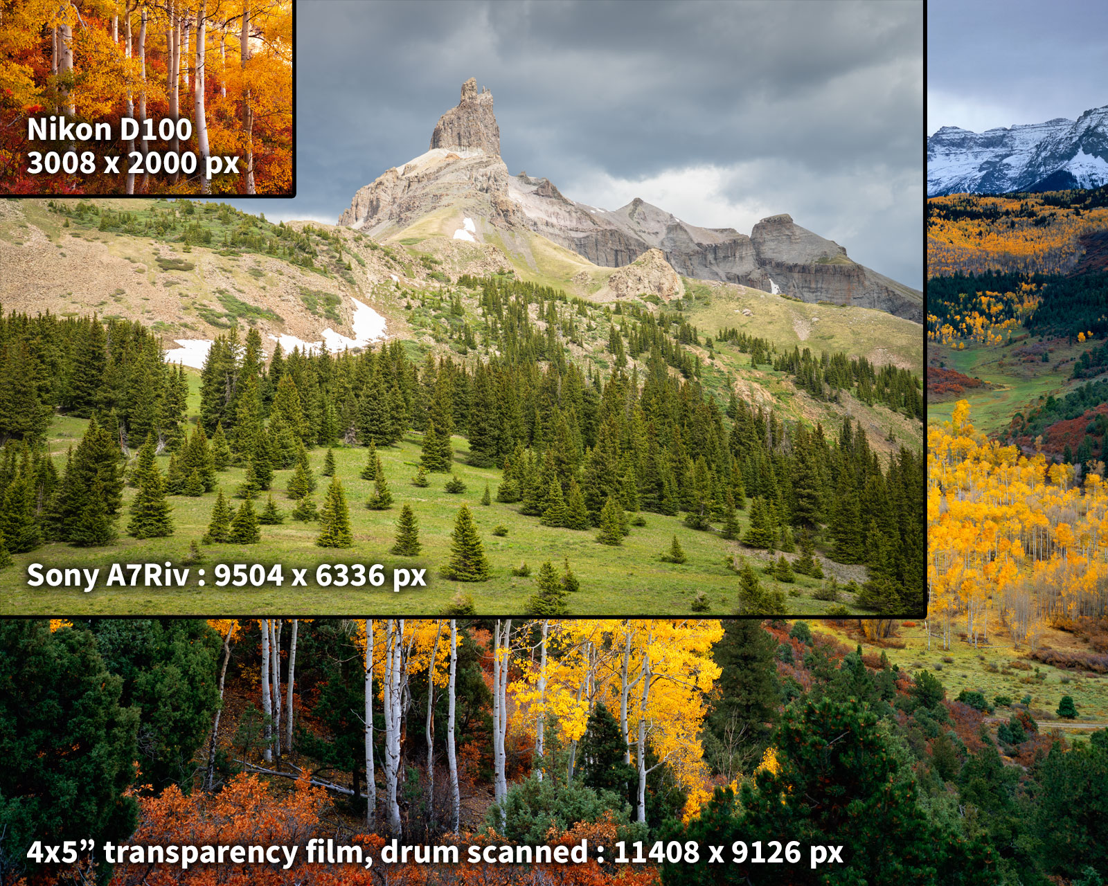 A comparison of the native pixel resolution of Nikon D100 (6mp), Sony A7Riv (61mp), and 4x5